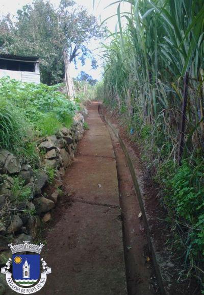 Limpezas de levadas e veredas no sítio do Pomar D. João
