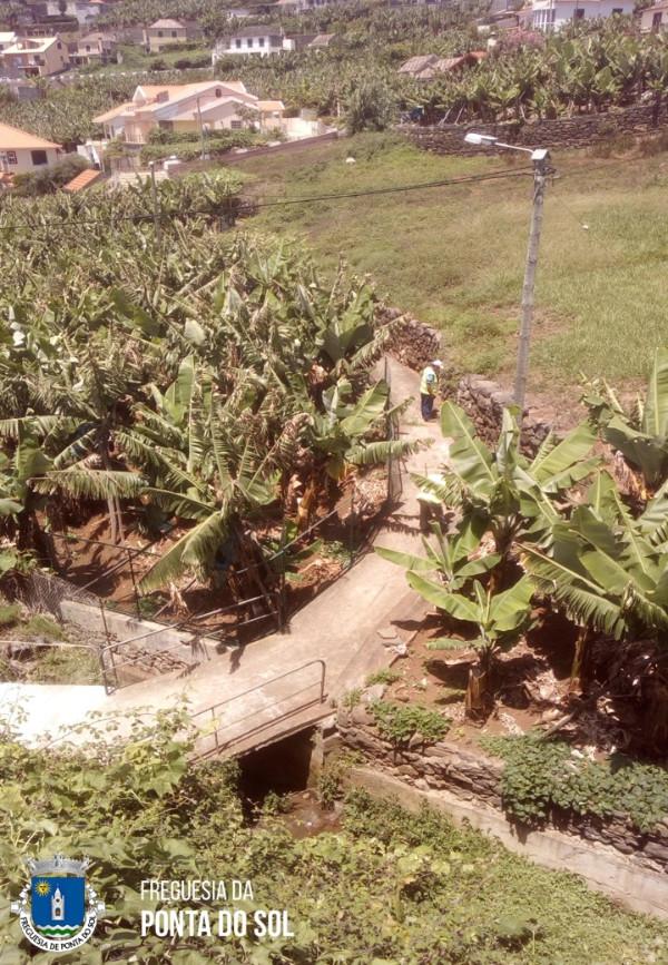 Limpezas das veredas e levadas na zona da Lombada