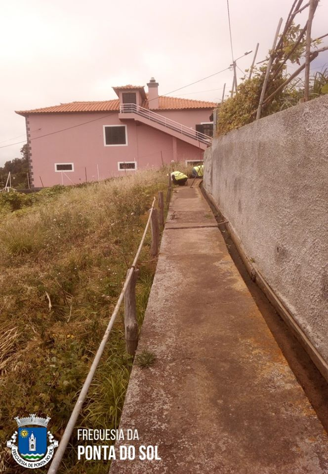 Continuamos com os trabalhos de limpeza no Pomar D. João