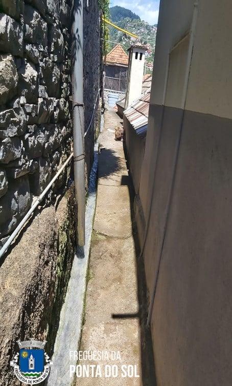 Estivemos da zona de Santo Amaro | mondas e limpezas